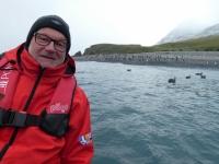 2019 03 11 Cooper Bay Makaroni Pinguine