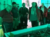 2019 03 16 Tristan da Cunha Fischfabrik