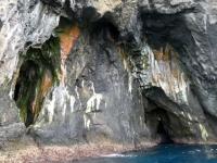 2019 03 17 Nightingale Island viele Höhlen