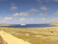 2019 03 05 New Island Coffins Harbour Blick zurück auf Landungsstrand