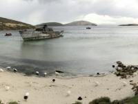 2019 03 05 New Island Süd Strand mit Schiffswrack