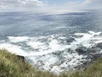 2019 03 16 Tristan da Cunha Klippen bei der Erdäpfelplantage