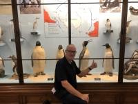 Pinguinausstellung