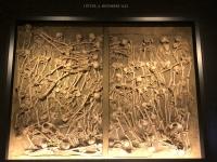 Schlacht bei Lützen 1632 Massengrab 47 Soldaten