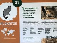 Wildkatze Beschreibung