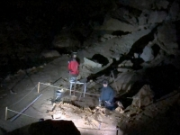 Fundstelle eines Höhlenbärs