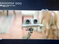 Roboterfahrzeug Snooper Dog verwendet in Angesicht des Todes 1985 von Roger Moore