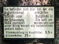 Burglinde Tafel