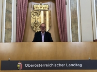 Landtagspräsidentensessel