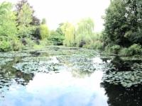 2019 08 05 Giverny Garten von Monet