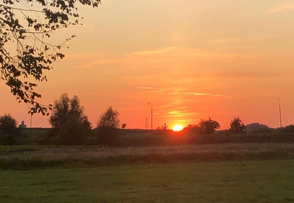 2019 08 24 Görlitz Führerhauptquartier Wolfsschanze Sonnenuntergang