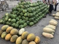 2019 09 28 Samarkand Markthalle Melonenauswahl