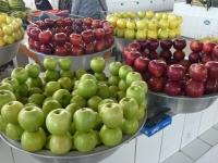 2019 10 01 Buchara Markthalle frisches Obst
