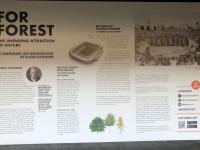 Entstehungsgeschichte der Ausstellung