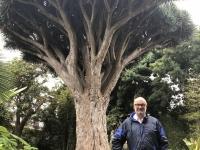 2019 10 21 Inselrundfahrt Ort La Oratava Botanischer Garten