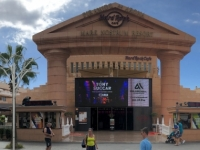 2019 10 20 Playa de las Americas Hard Rock Cafe