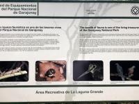 Spanien Nationalpark Garajonay Kanaren auf Insel La Gomera Tafel 2