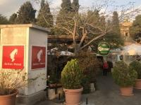 2019 11 28 Haifa Garten vor Karmeliterkloster