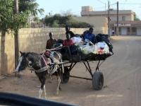 2020 02 11 Transportmittel Nr 1 in Senegal