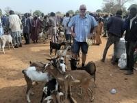 2020 02 12 Ngueniene Tiermarkt Ziegenabteilung