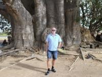 2020 02 12 grösster Baobab Baum Westafrikas mit 850 Jahren