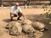 2020 02 13 Schildkrötendorf hunderte Schildkröten