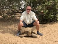 2020 02 13 Schildkrötendorf natürlich keine volle Belastung