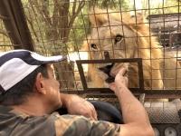 2020 02 15 Löwenreservat_Fütterung
