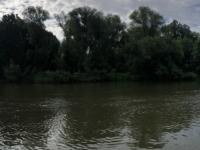 2020 07 04 Kassel Fluss Fulda am Auedamm