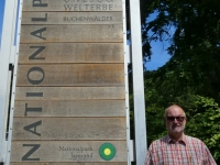 Deutschland Buchenurwälder in den Karpaten und alte Buchenwälder in Deutschland NP Jasmund Tafel