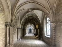 2020 08 27 Regensburg Schloß Thurn und Taxis Kreuzgang im ehemaligen Kloster