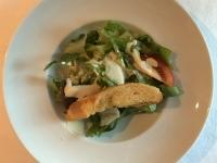 VS Ceasar Salat