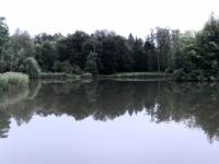 2020 09 02 Krasiczyn  Schlossgarten
