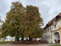 2020 10 12 Kloster Oberschönenfeld Gastgarten Brauhof