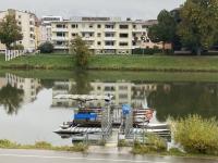2020 10 12 Ulm Donau im Spiegelbild