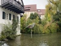 2020 10 11 Ulm Fischerviertel