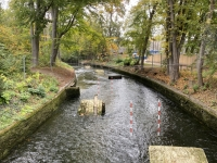 2020 10 13 Augsburg Kanu Olympiastrecke Unesco