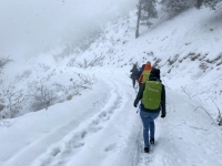 Abmarsch diesmal nur auf der Forststrasse und 30 cm Schnee