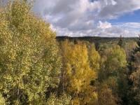2020 10 24 Schrems Naturpark Blick von der Himmelsleiter