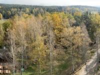 2020 10 25 Gmünd Naturpark Blockheide Blick vom Aussichtsturm