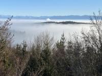 Lenzingrauch arbeitet sich durch die Nebeldecke