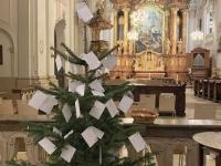 Wunschchristbaum in der Ursulinenkirche