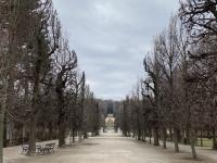 Schloss Schönbrunn Bäumeallee