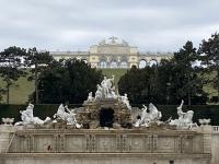 Schloss Schönbrunn Neptunbrunnen mit Gloriette