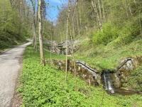 Bergauf Richtung Altwartenburg