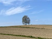 Geispiel höchster Punkt der Stadt Vöcklabruck mit 559 Meter