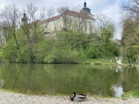 Bewohner Schlossteich