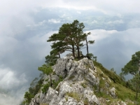 2021 06 23 Aufstieg Naturfreundesteig 4