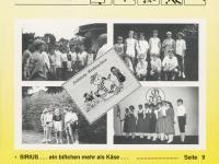 1991 11 Nr 8