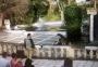 2003 03 04 Lissabon Zoo Greifvogelschau